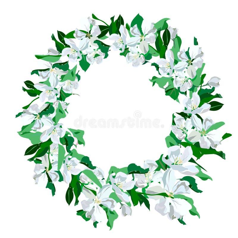 Übergeben Sie gezogenen eleganten und romantischen grafischen Blumenrahmen mit blühender Niederlassung des Apfels lizenzfreie stockfotografie