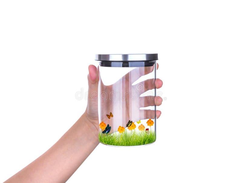 Übergeben Sie Griffglasgefäß mit dem lokalisierten Innere des grünen Grases und des Schmetterlinges des neuen Frühlinges stockfotografie