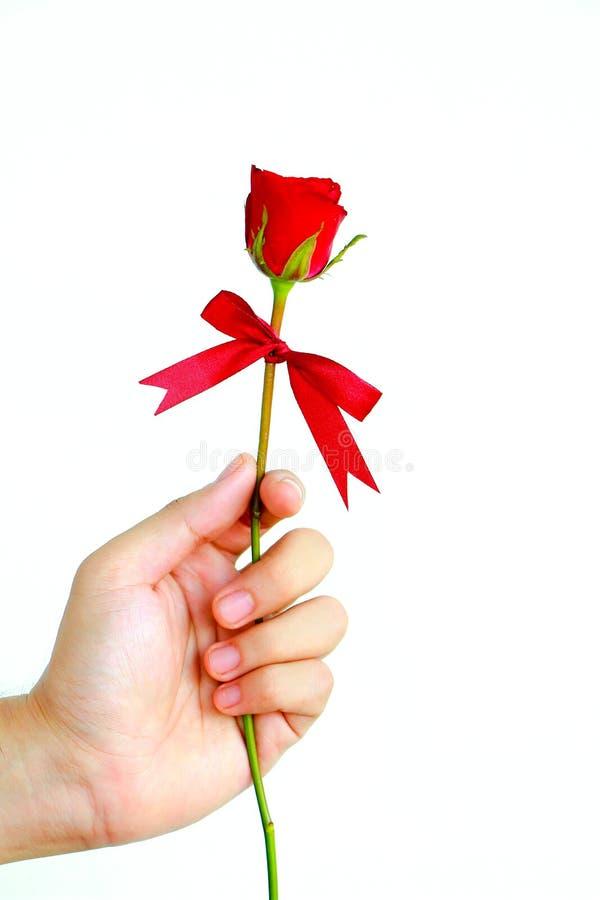 Übergebung einer Rose als Darstellung stockfotografie