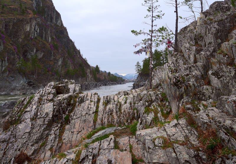 Überlagerte Felsen auf der Bank von Katun lizenzfreies stockfoto