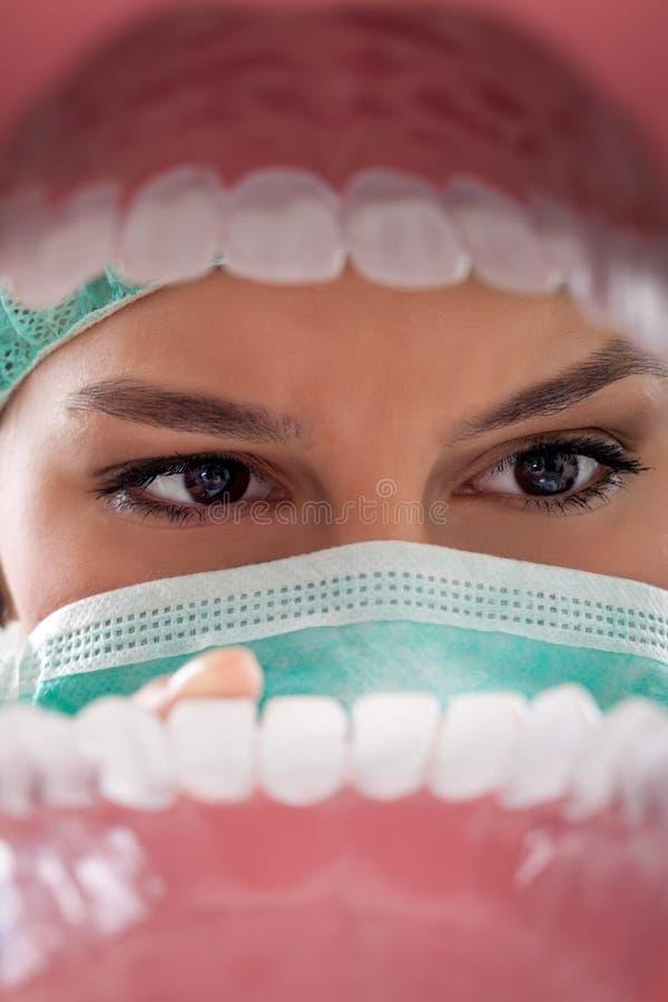 Überprüfenzähne des weiblichen Zahnarztes. stockfotos