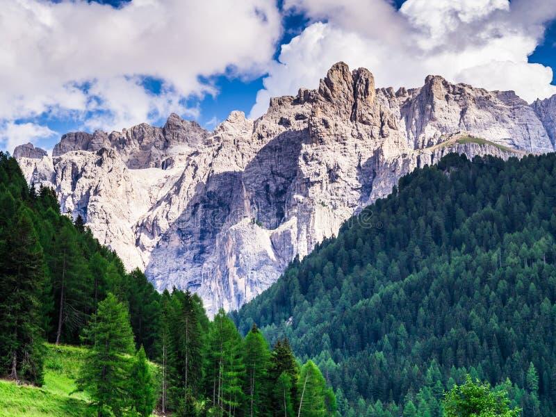 Überraschende Ansicht der felsigen Dolomitberge und des grünen Holzes von Trentino Alto Adige lizenzfreies stockfoto