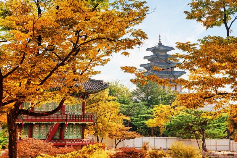 Überraschende Ansicht des bunten Herbstgartens Gyeongbokgungs-Palastes lizenzfreies stockbild