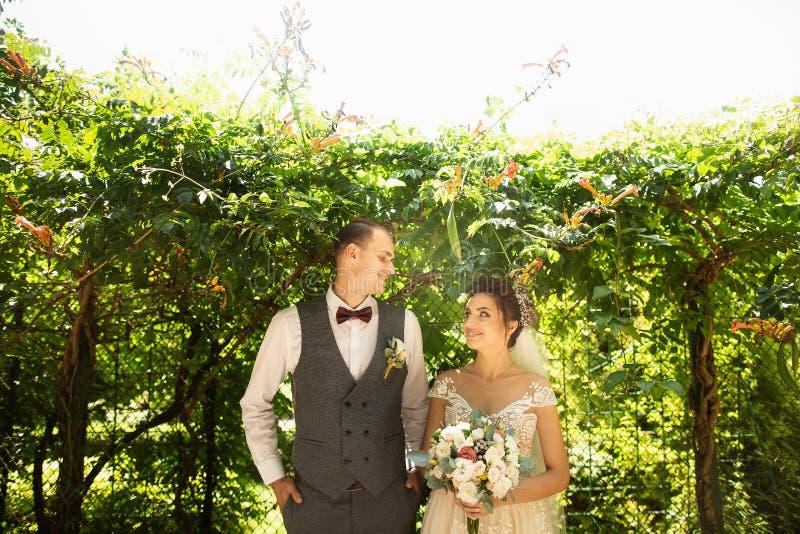 Überraschende Hochzeitspaare, die auf einem grünen natürlichen Hintergrund aufwerfen stockfoto