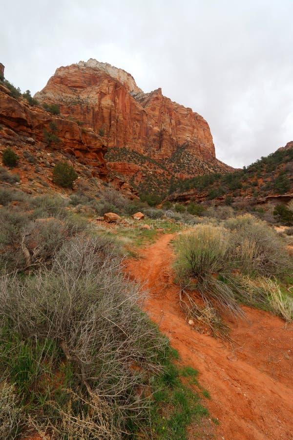 ?berraschende Landschaft in Zion National Park stockbild
