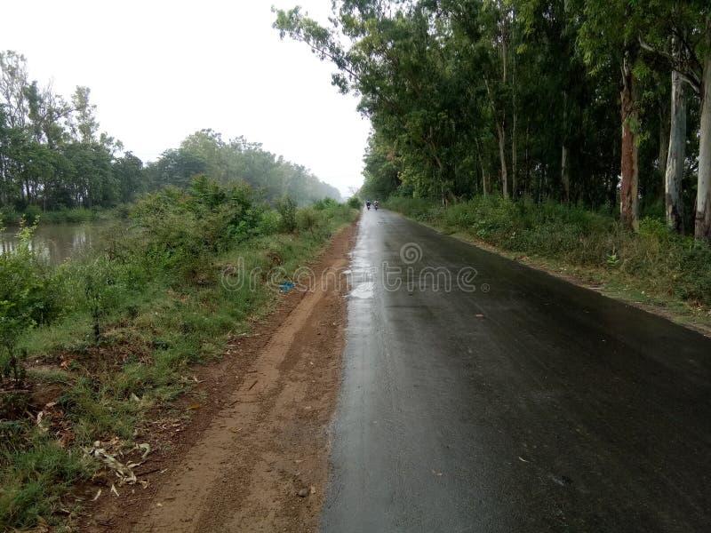 Überraschende Straßen INDIENS lizenzfreie stockbilder