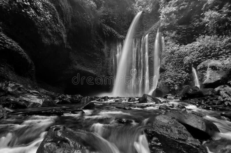 Überraschender Schwarzweiss--Wasserfall Tiu Kelep der schönen Kunst nahe Rinjani, Senaru Lombok Indonesien Die Kayan-Leute sind e stockbilder