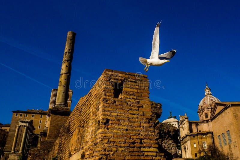 Überraschender sonniger Tag in Rom stockfotografie