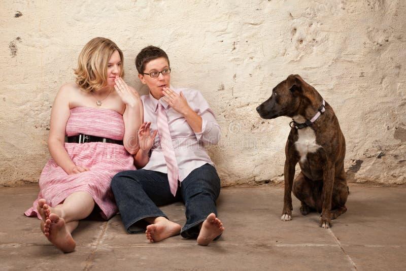 Überraschte Frauen mit Hund lizenzfreie stockbilder