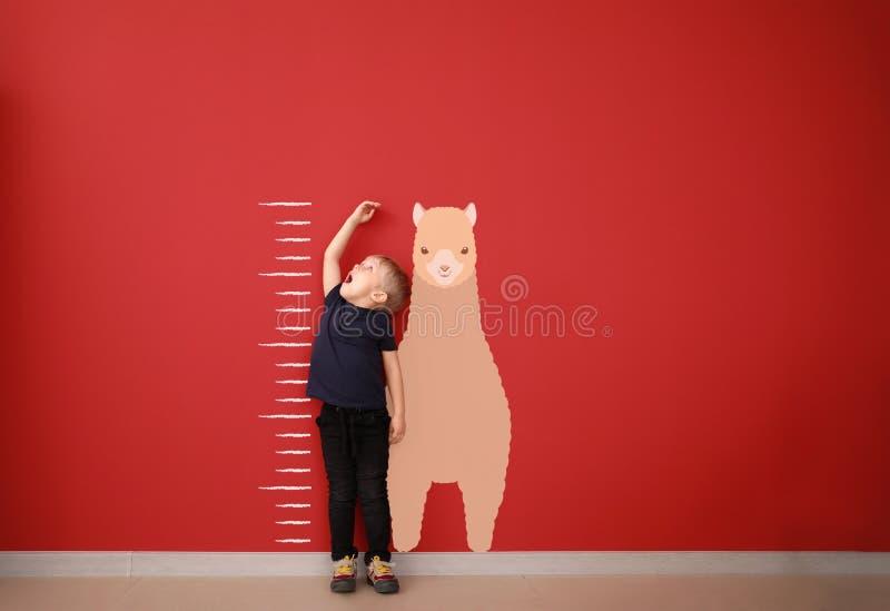 Überraschte messende Höhe des kleinen Jungen nahe Farbwand stockfotografie