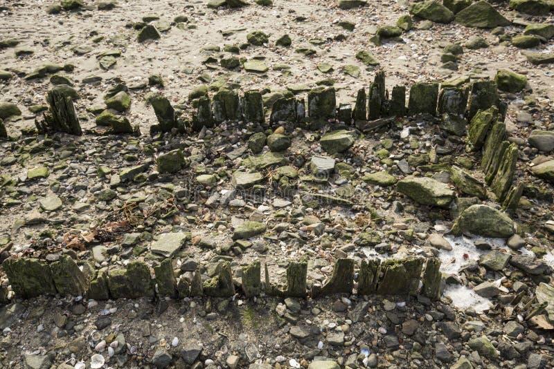 Überreste des Piers am Silber versandet Strand in Milford, Connecticut lizenzfreie stockfotos