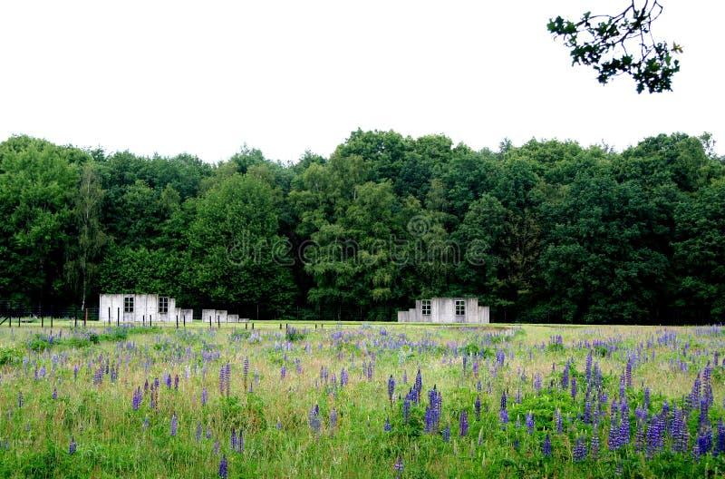 Überreste von Kasernen im Westerbork-Durchfahrtlager stockfoto