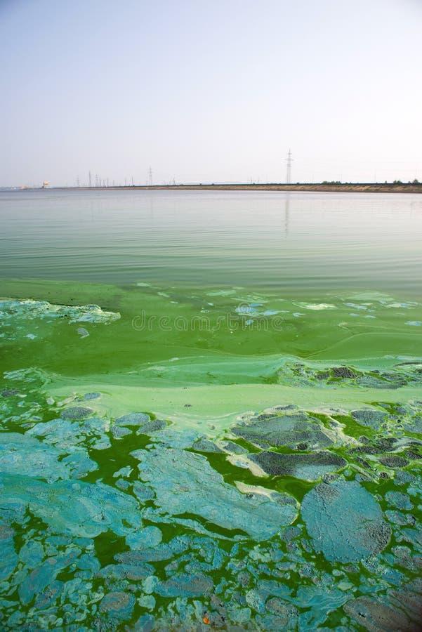 Überschüssige Verschmutzung der Chemikalie lizenzfreies stockbild