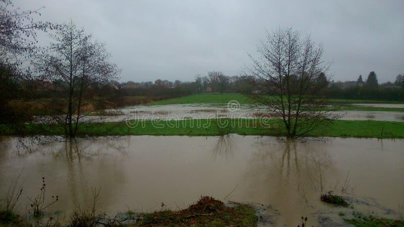 Überschwemmte Felder stockbilder