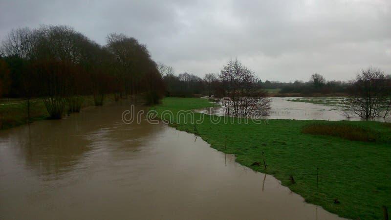 Überschwemmte Felder lizenzfreie stockfotografie