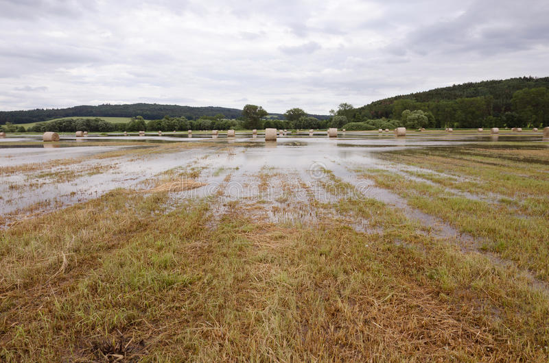 Überschwemmtes Feld stockbilder