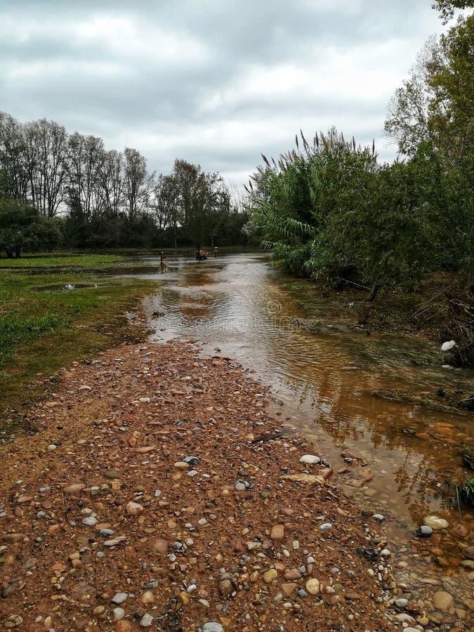 Überschwemmtes ländliches Gebiet lizenzfreie stockfotografie