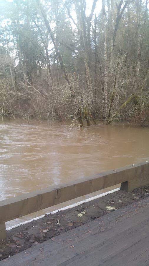 Überschwemmung lizenzfreies stockfoto