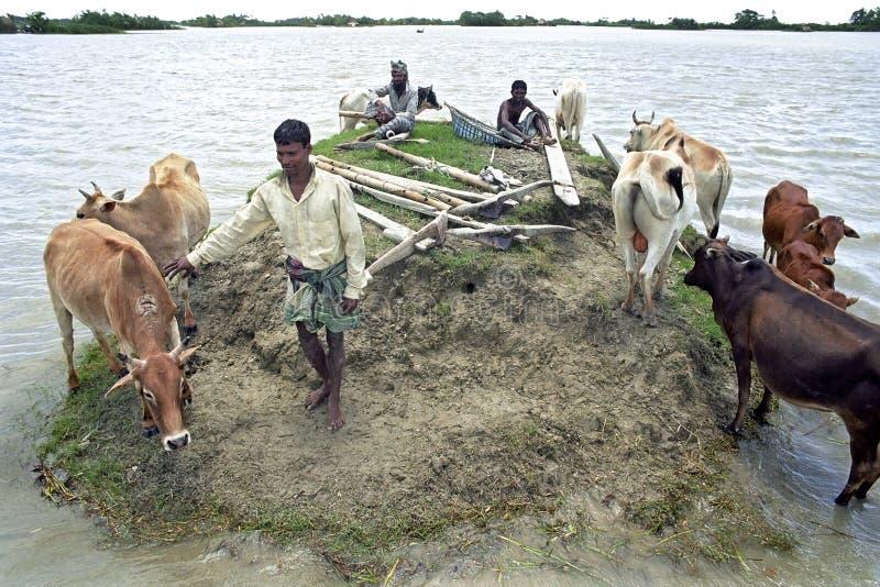 Überschwemmung im Delta Bangladesch, Klimawandel lizenzfreie stockfotografie