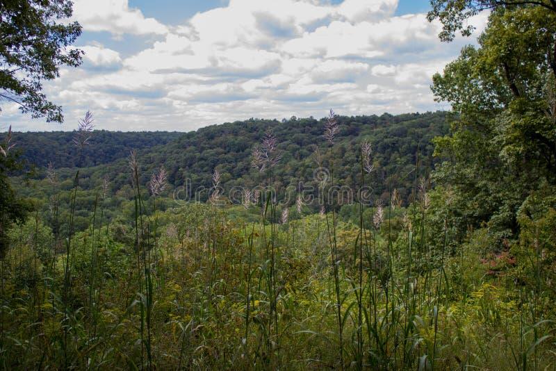 Übersehen Sie Hügel-Berg lizenzfreies stockfoto