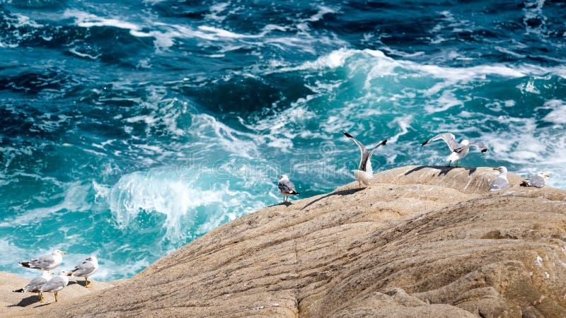 Überwachen der Wellen lizenzfreie stockbilder