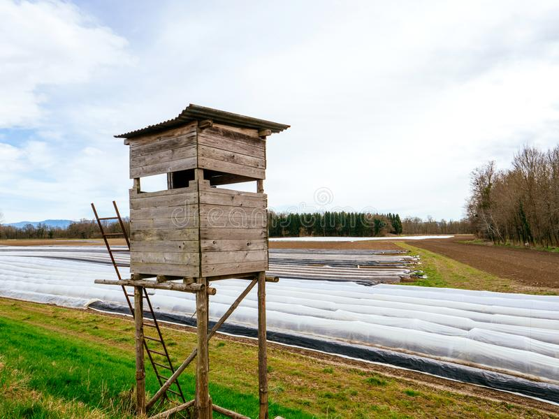 Überwachungsjagdchalet nahe bei Spargelplantagenfeld stockfotografie