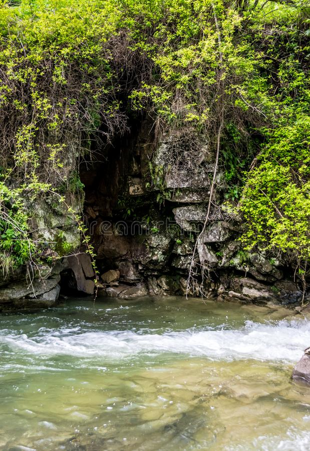 Überwucherte grüne Klippe über einem Gebirgsfluss lizenzfreie stockbilder