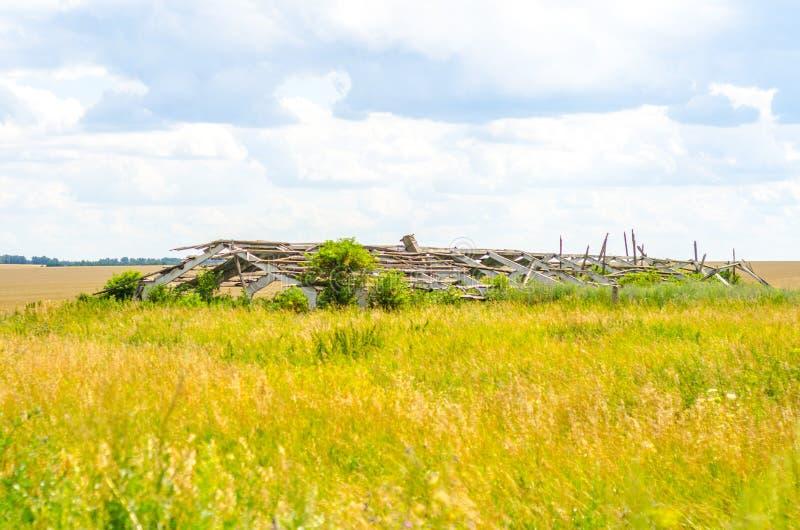 Überwucherte landwirtschaftliche Ruinen lizenzfreie stockfotografie