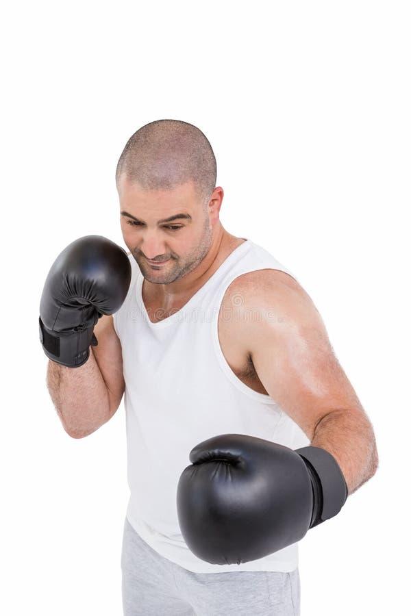 Überzeugter Boxer, der Verpackenposition durchführt stockbild