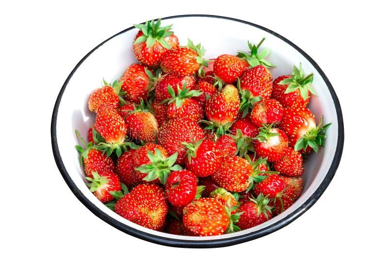 Überziehen Sie voll von den frischen roten Erdbeeren, die auf Weiß lokalisiert werden stockfotografie