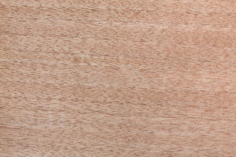 Üblicher heller Furnier-Blatthintergrund für Ihren neuen Innenraum lizenzfreie stockfotos
