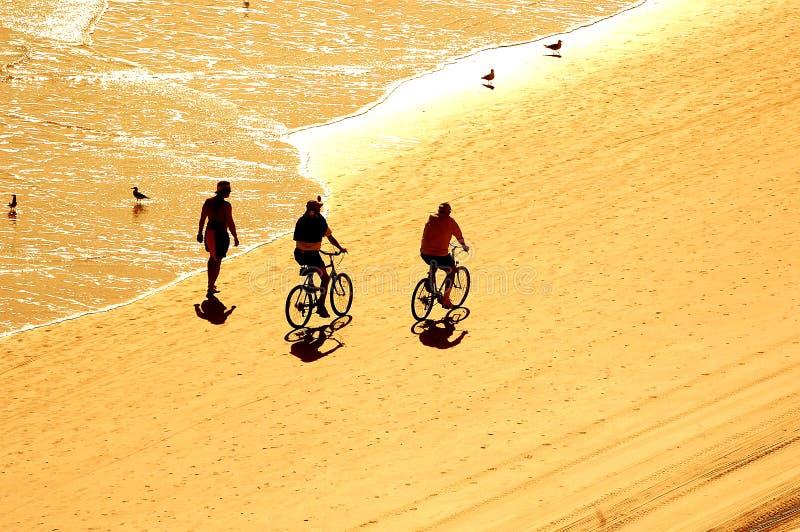 Übung am Sonnenaufgang auf Strand stockfotos