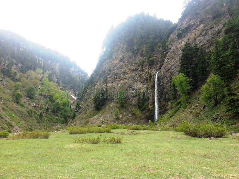 Üppige grüne Wiese mit Wasserfall stockbild