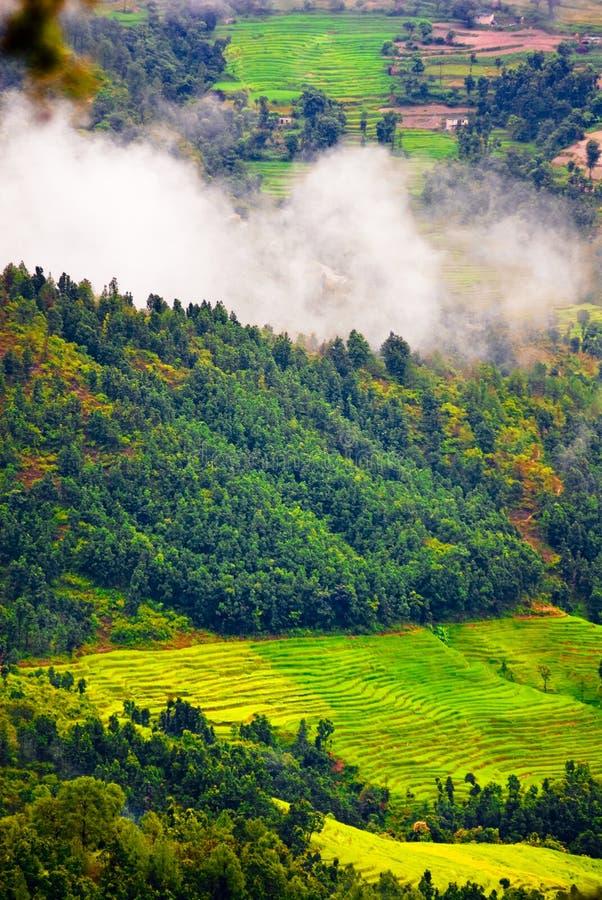 Üppige tibetanische Landschaft stockfoto