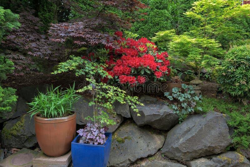 Üppiger Garten-Hinterhof im Frühjahr lizenzfreie stockbilder