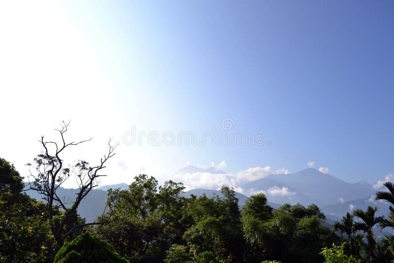 Üppiger Wald und Berge mit der Farbabstufung des Himmels lizenzfreies stockbild