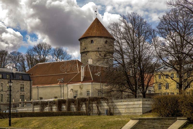 Ćwiartka stary miasto jest w Tallin, Estonia zdjęcia stock