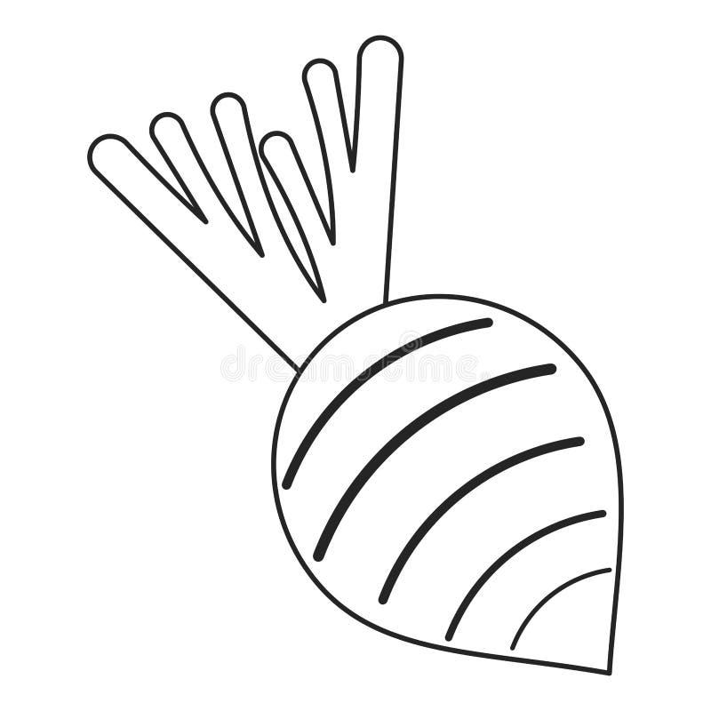 Ćwikłowego jarzynowego odżywiania cienka linia ilustracja wektor
