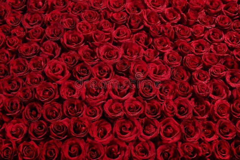 łóżkowe róże zdjęcie royalty free