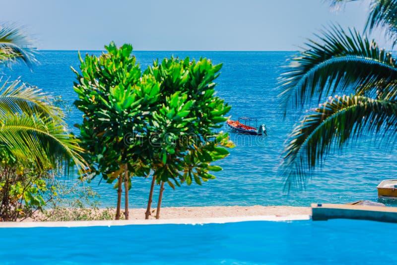Łódź na falach w pięknym morzu Palmy gałąź w przedpolu Denny widok od basenu wygodny hotel obrazy royalty free