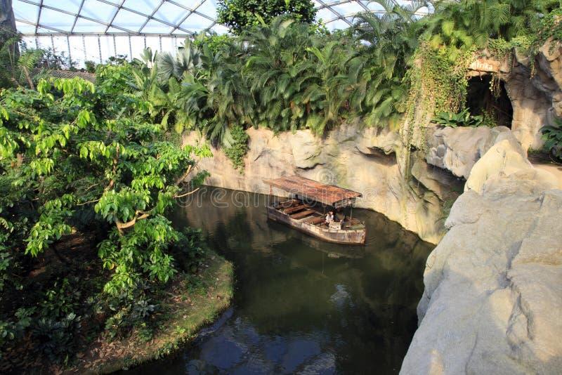 Łódź na tropikalny las deszczowy rzece obrazy stock