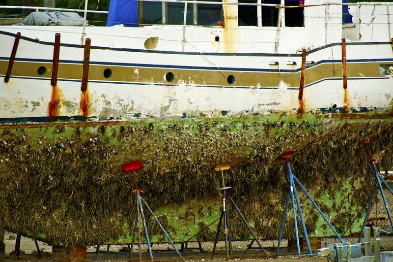 Łódź w doku fotografia stock