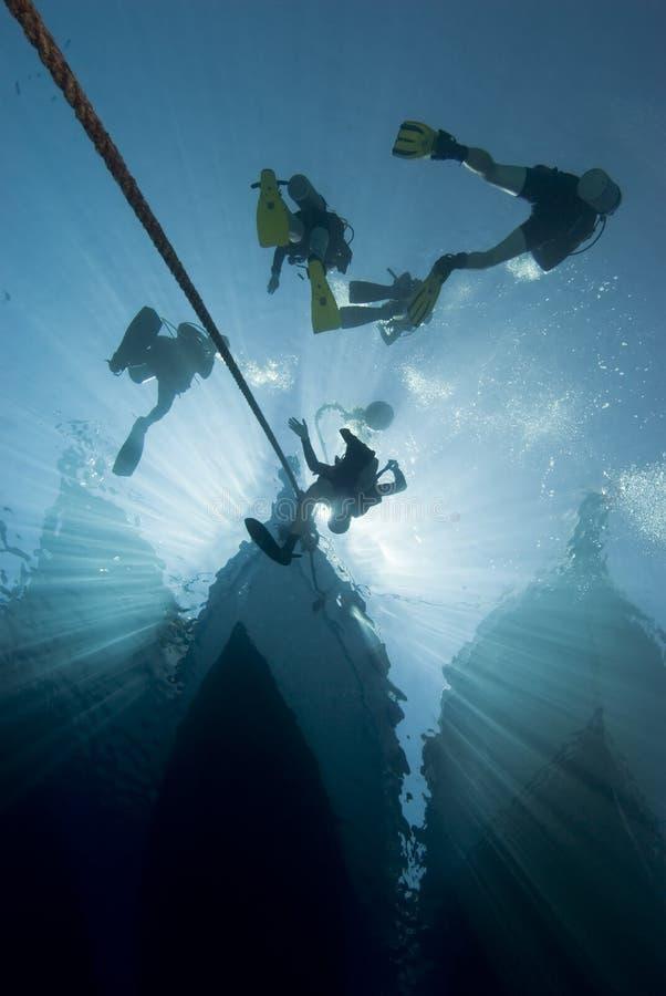 łódkowata nura nurków sylwetka fotografia royalty free