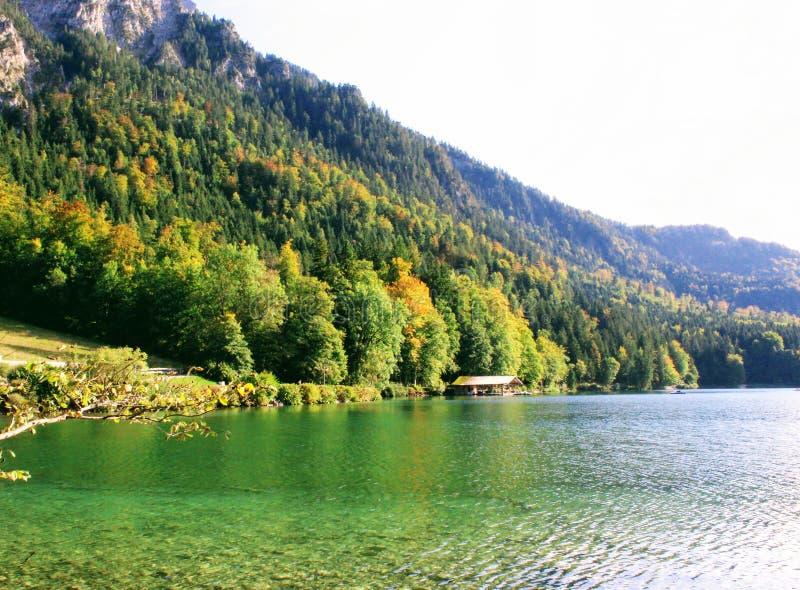 Łódkowatego domu jezioro z drzewną górą obrazy royalty free