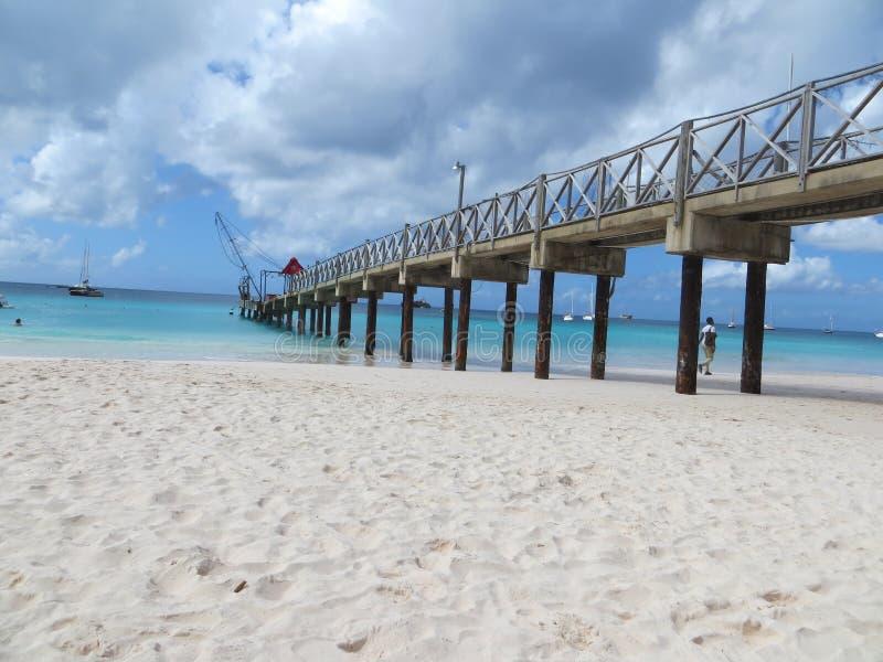 Łódkowaty jard Barbados zdjęcia royalty free