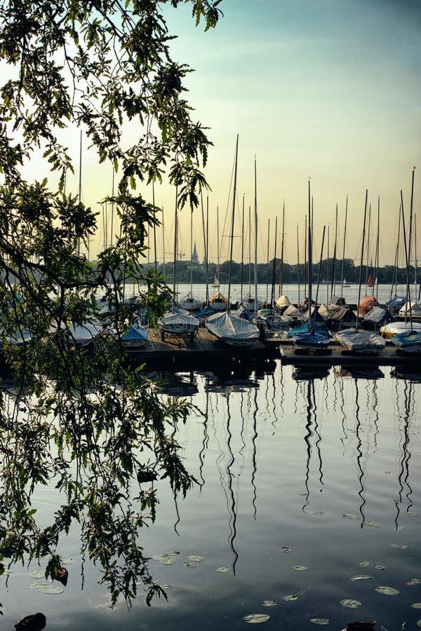 Łódkowaty natury Alster jezioro w Hamburskim Niemcy pięknym i sławnych miasto parka ludziach wiosłuje żeglowania nieba schronieni obraz royalty free