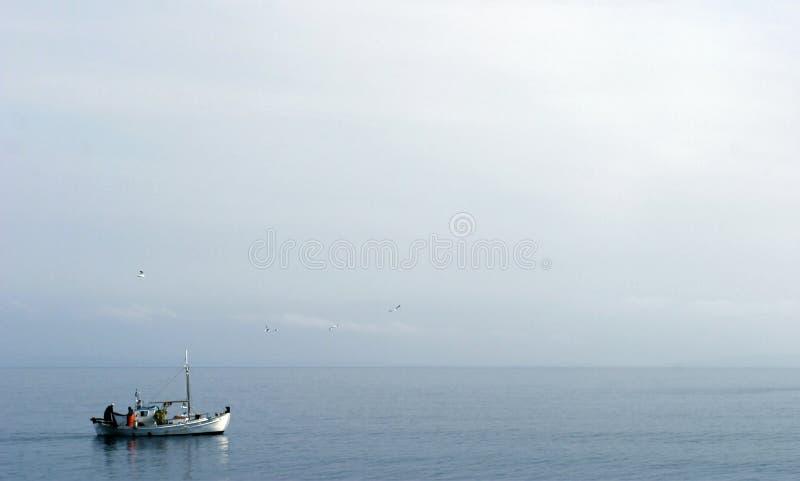 łódkowaty połowu żeglowanie zdjęcie royalty free