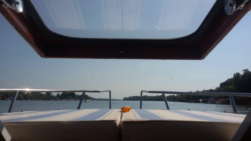 Łódkowaty statku żeglowania rzeki jacht zdjęcia royalty free
