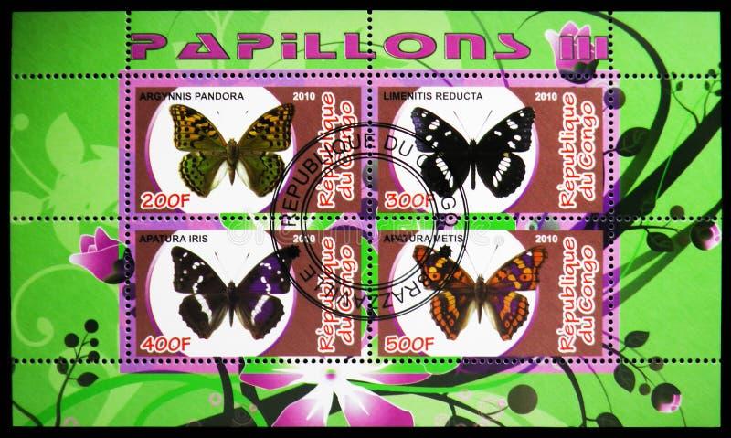Łączny zagadnienie cztery znaczka pocztowego od motyla seria drukującego w Kongo, około 2010 ilustracji