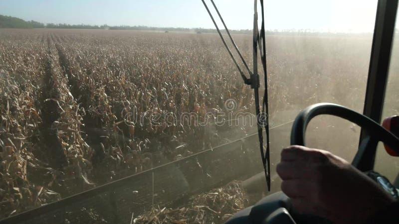 Łączy zbierać kukurudzy, widok od kierowcy cabine zdjęcia royalty free